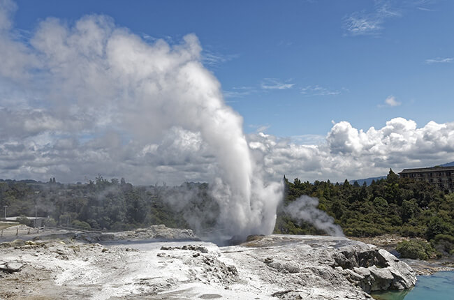 Geyser breaching the grey rocks at Rotorua in New Zealand - Lush green forest in background