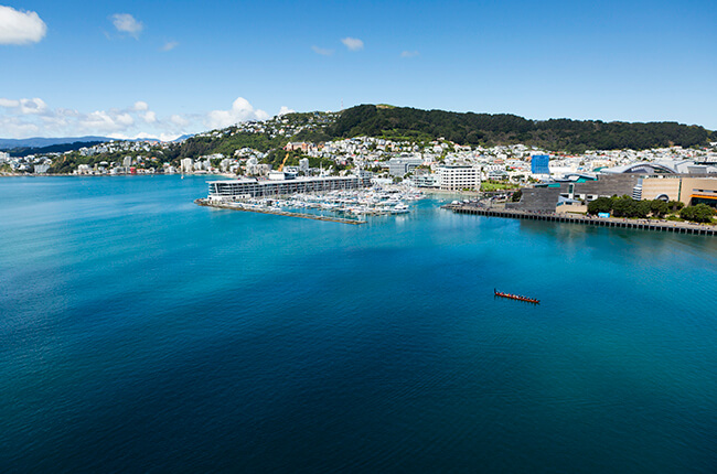 Aerial view of the harbour of Wellington, with the city in the distance