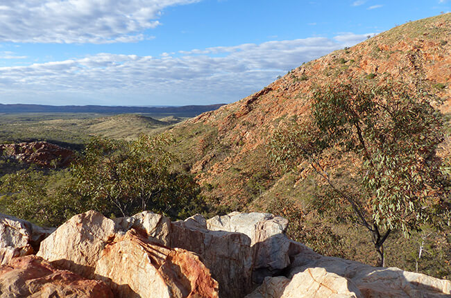Photo looking out over the Western MacDonnall Ranges