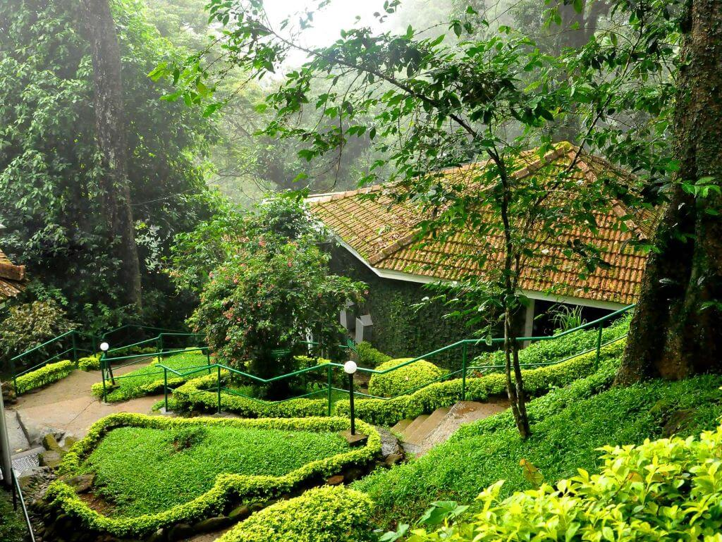 Garden view of The Tall Trees hotel in Munnar