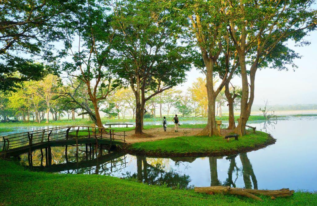 Sri Lanka_Habarana_Cinnamon Lodge_Habarana Lake