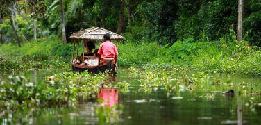 boat sailing through Kerala backwaters